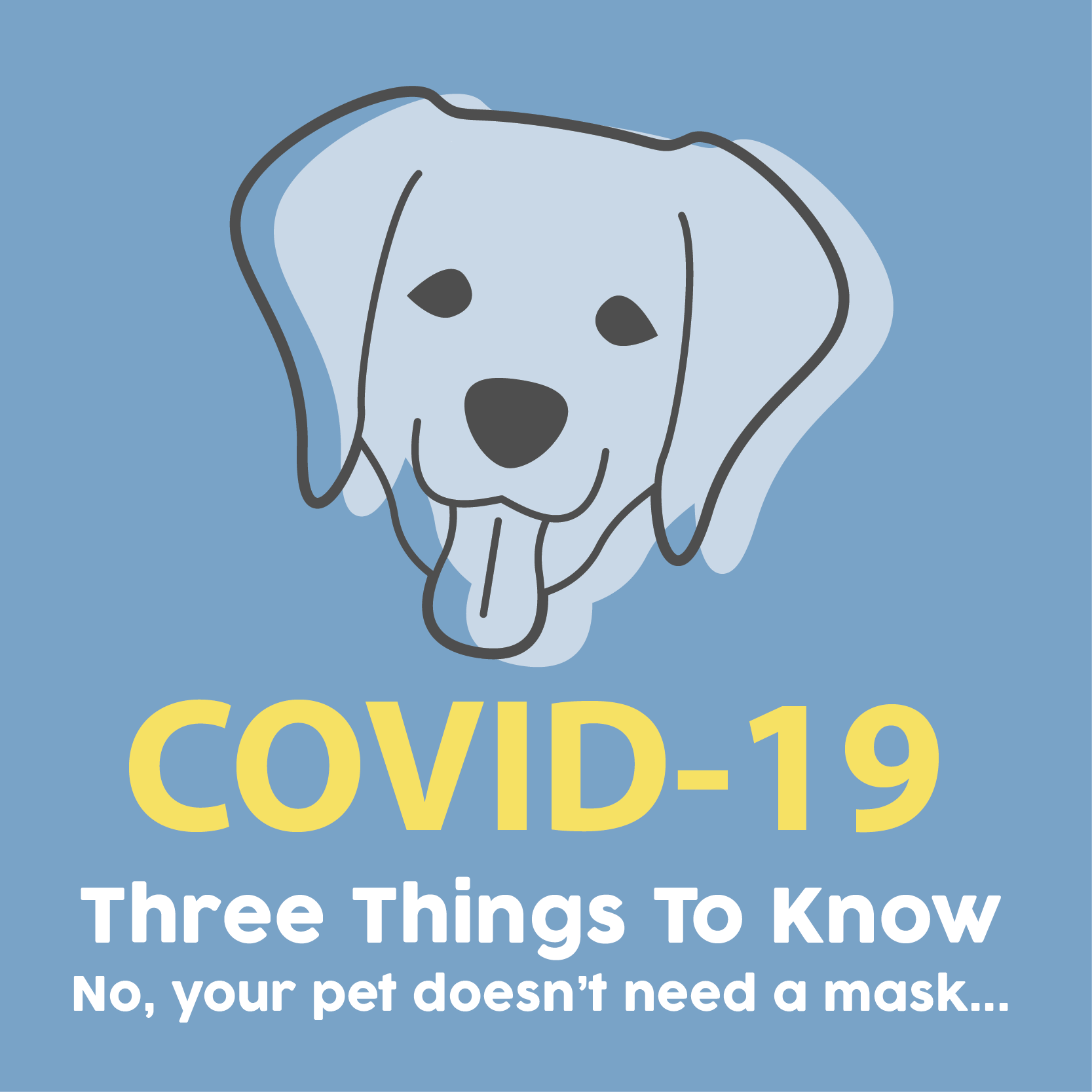 Covid-19 | What you need to know!
